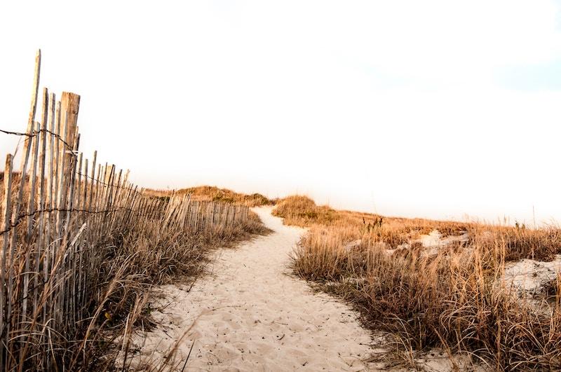 Beach-erda-estremera-36272-unsplash